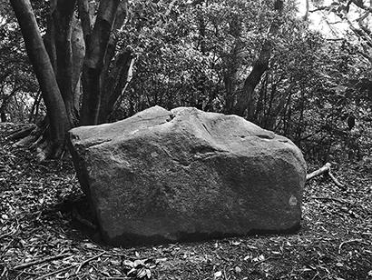 自然石で作られた野枝の墓
